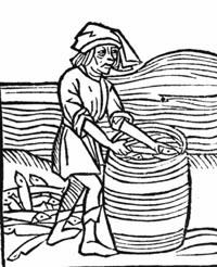 Einlegen von Heringen. Holzschnitt, 16. Jahrhundert.