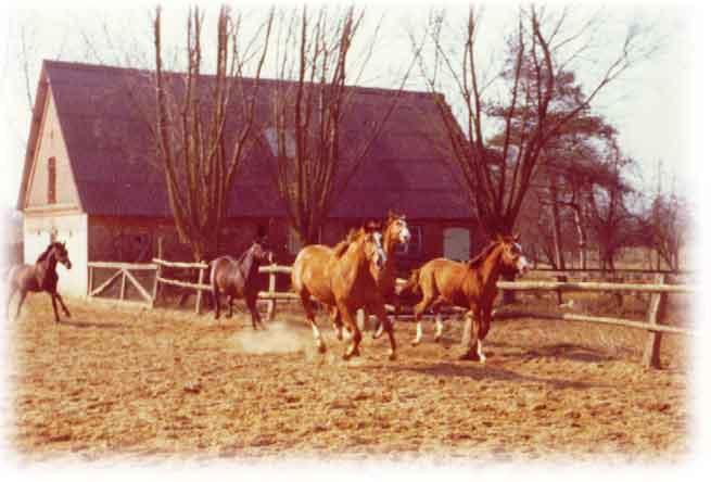 Hans woydak mit seiner frischvermählten 196 die kinder 1989